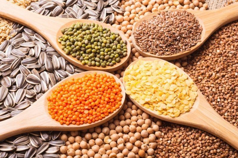 Zinok - potraviny bohaté na bielkoviny