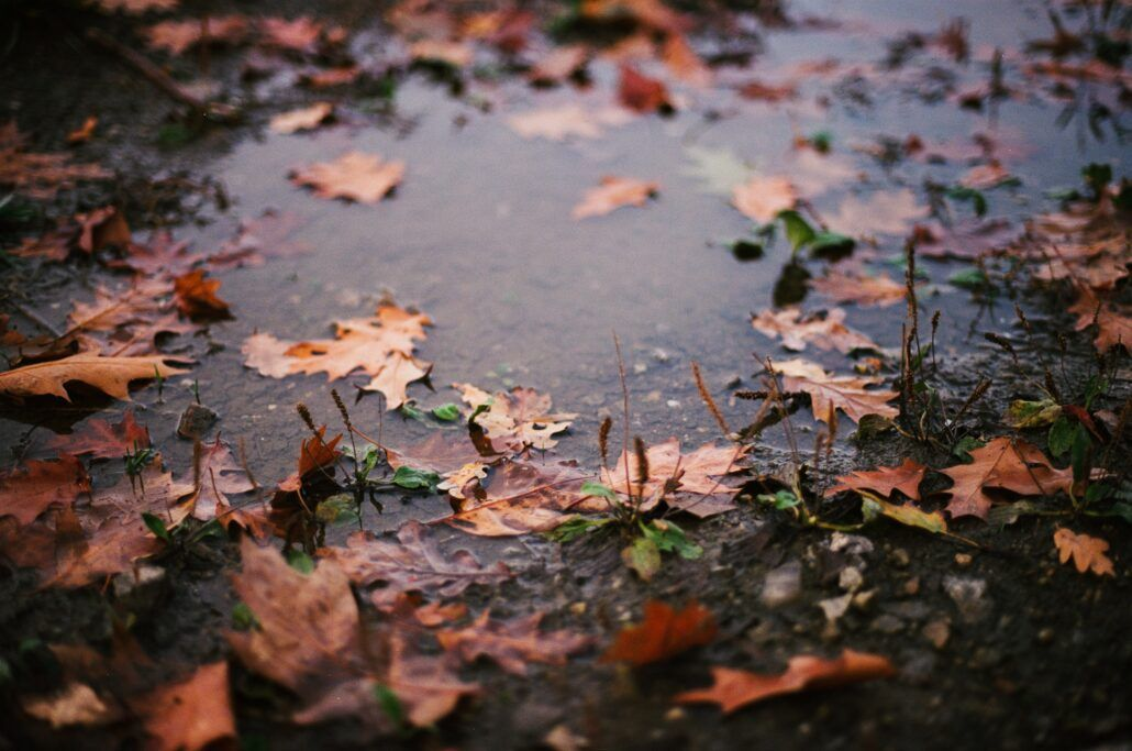 Meteosenzitivita - jesenné počasie