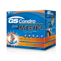 GS Condro® DYNAMIC, 100 tabliet