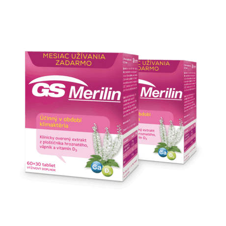 GS Merilin, 2 x 90 tabliet