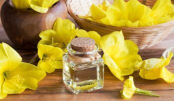 Pupalka dvojročná – prevencia v boji proti starnutiu pleti